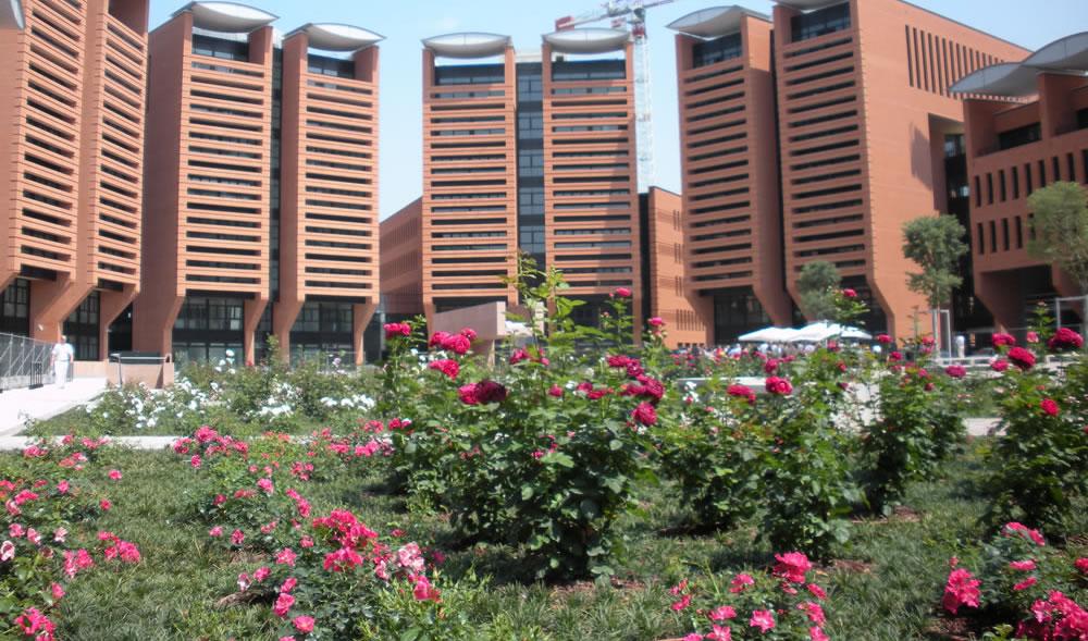 Complesso polifunzionale a Treviso con aiuola di rose rosse