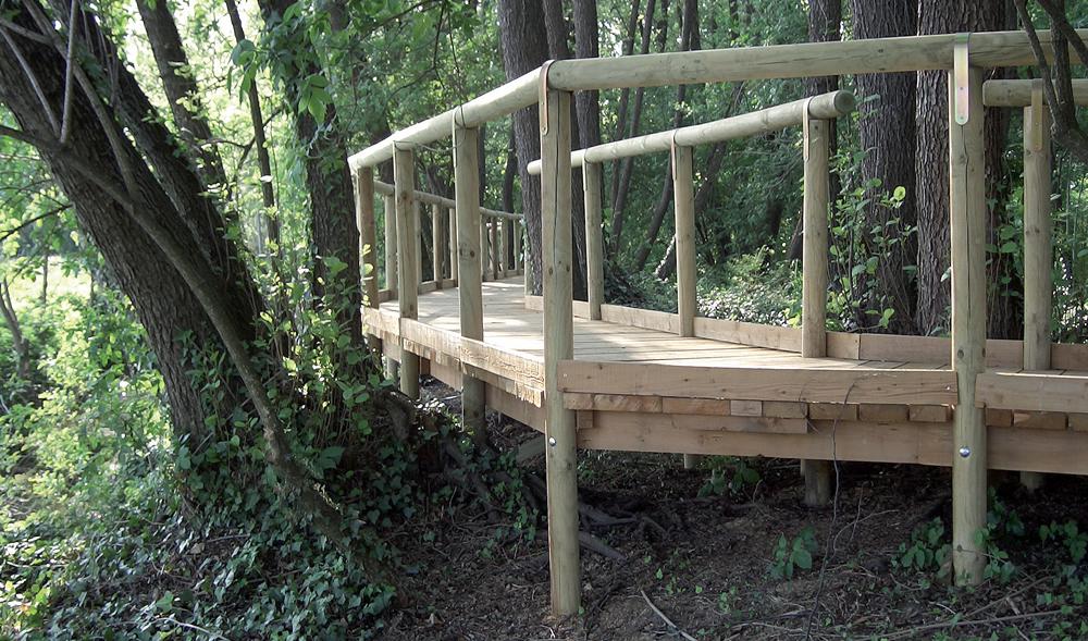 Infrastruttura per sentiero nel bosco realizzata da Il Germoglio