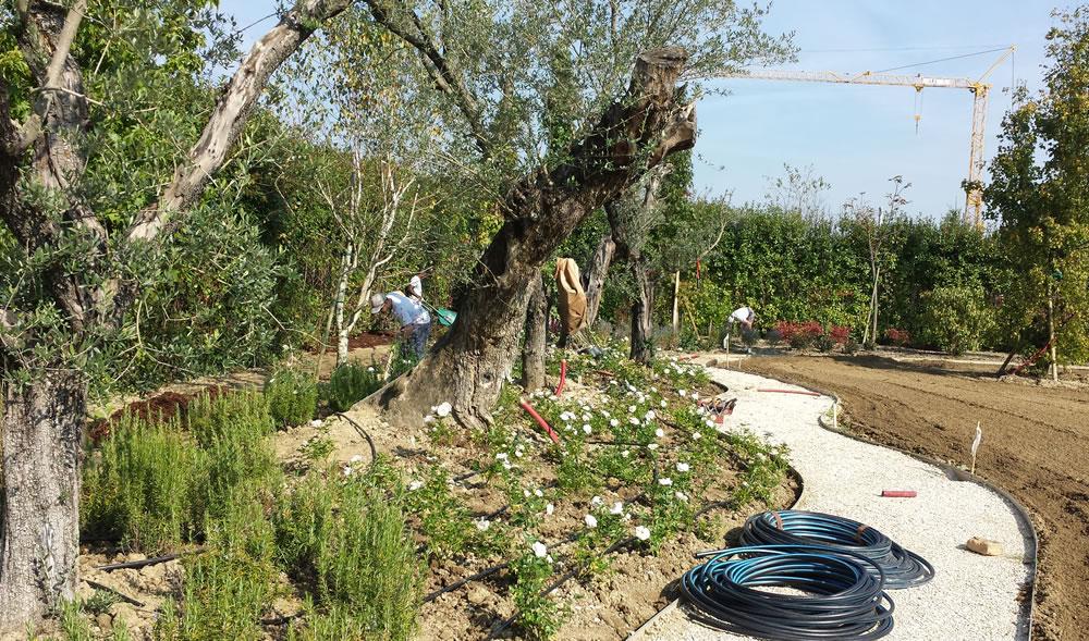 Dettaglio di impianto d'irrigazione realizzato da Il Germoglio