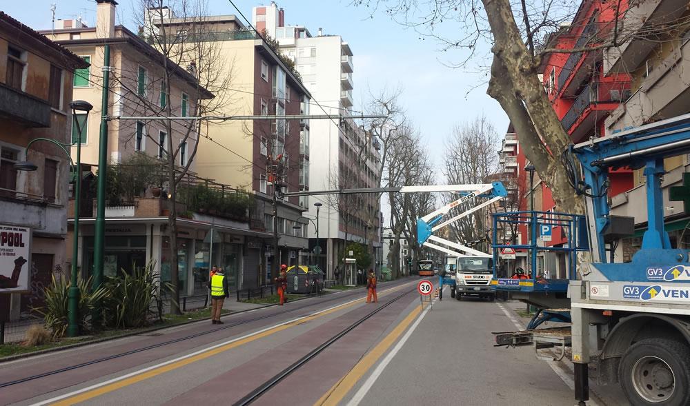 Manutenzione verde stradale realizzata da Il Germoglio