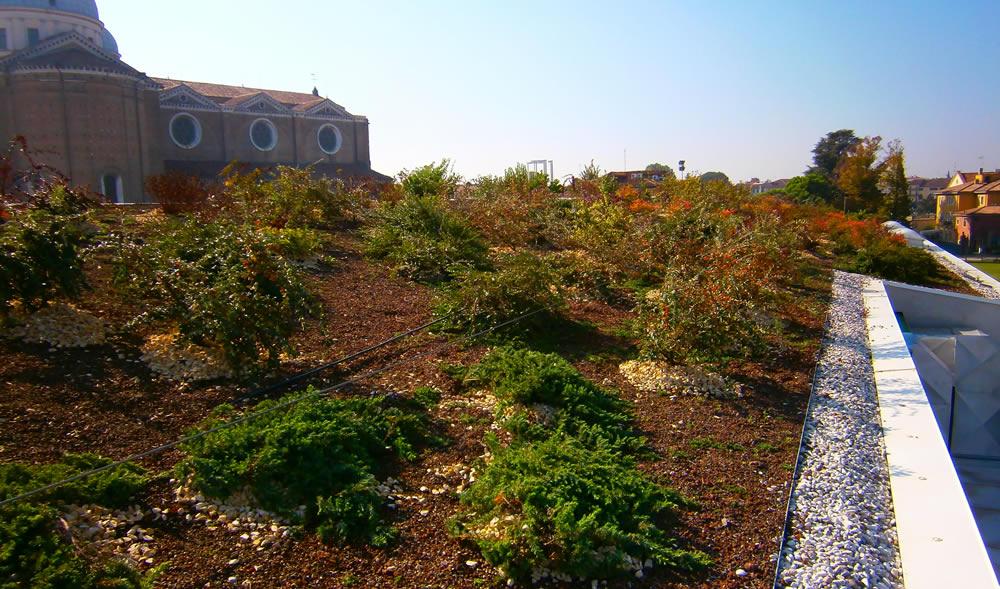 orto-botanico-ghiaia-tetto