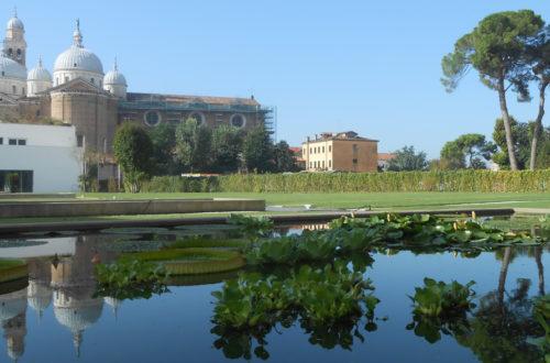 Orto Botanico, Padovathumb