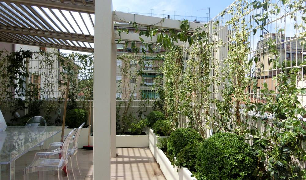 terrazzo-verde
