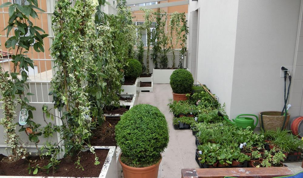 vasi-piante-terrazzo