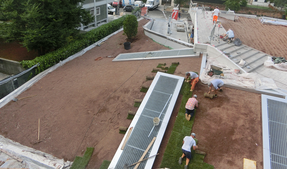 Fase finale della realizzazione del giardino pensile a Mestre (VE)