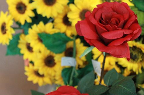 fiori singoli thumb