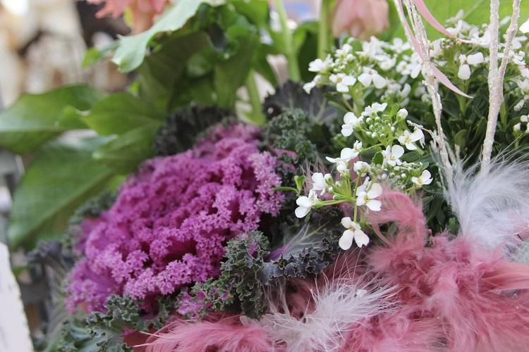 Fiori per balconi d inverno: piante per balcone inverno le fioriere