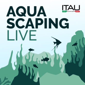 Aquascaping live: un paesaggio sommerso thumb