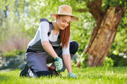 Più in forma curando le piante thumb