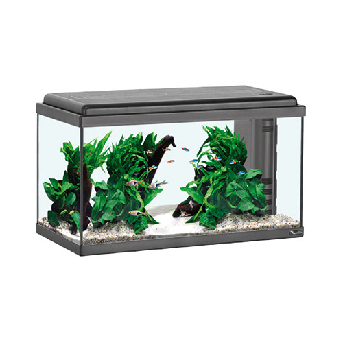 Acquario Aqua Led 60 Cover