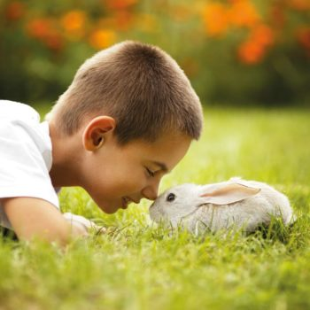 Un coniglietto per amicothumb