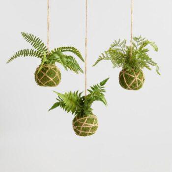 Kokedama: le piante che volano thumb