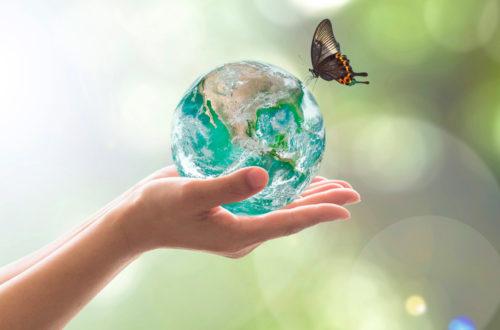 Rispetto Ambientale, Sicurezza e Salute sul lavoro: ora il Germoglio è certificato! thumb