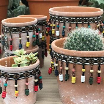 Piante grasse e vasi in coccio Mexican style
