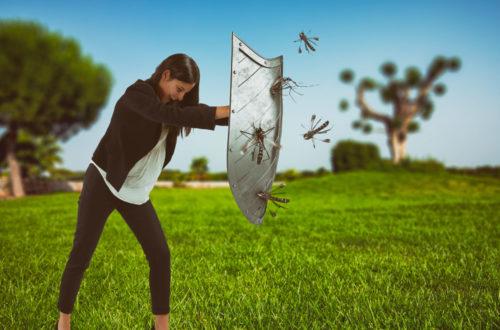 Via le zanzare dal giardino! thumb
