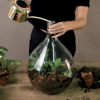 Crea il tuo Plant Terrarium thumb