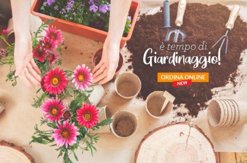 È tempo di giardinaggio! Ordina online e ricevi la consegna a domicilio. thumb